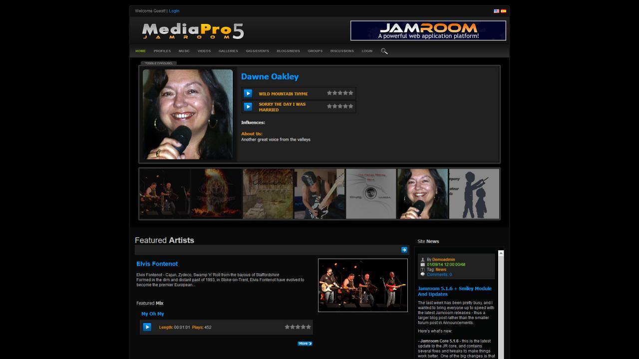 Media Pro Dark