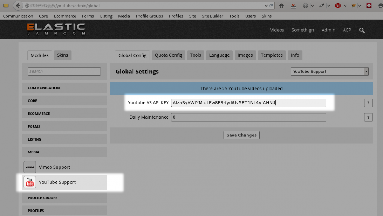 How to get your youtube api key youtube importer - Copy The Youtube Api Key In To The Global Config