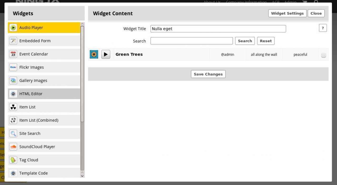 Widget: Audio Player