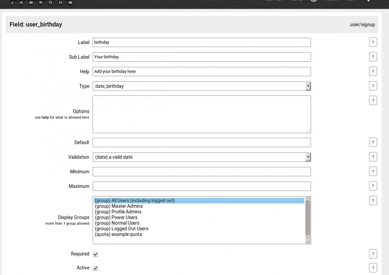 Form Designer settings that created the Birthday field