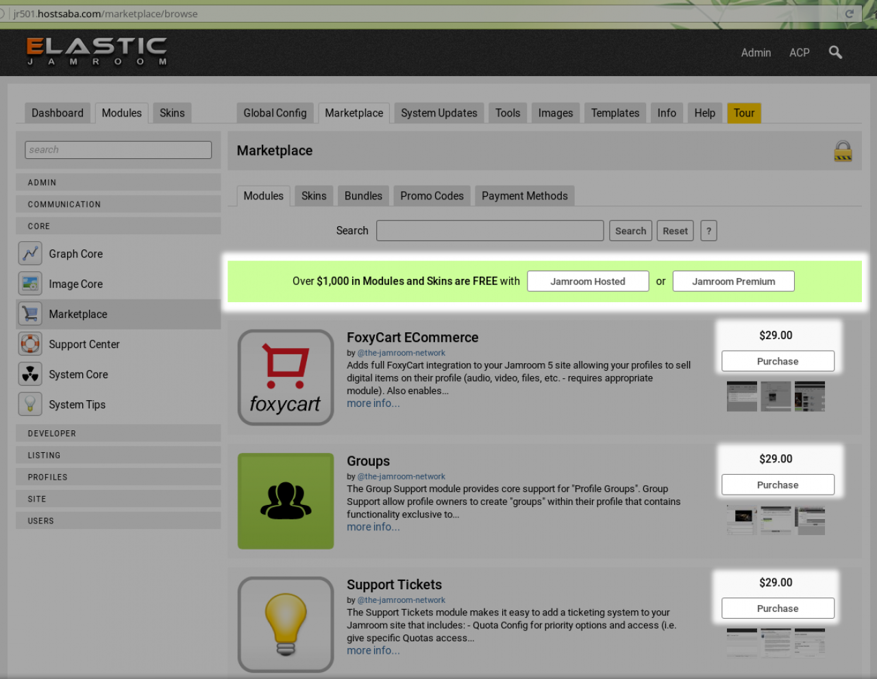 (screenshot of the marketplace without Jamroom Premium)